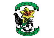 North Dublin Schoolboys/Girls League